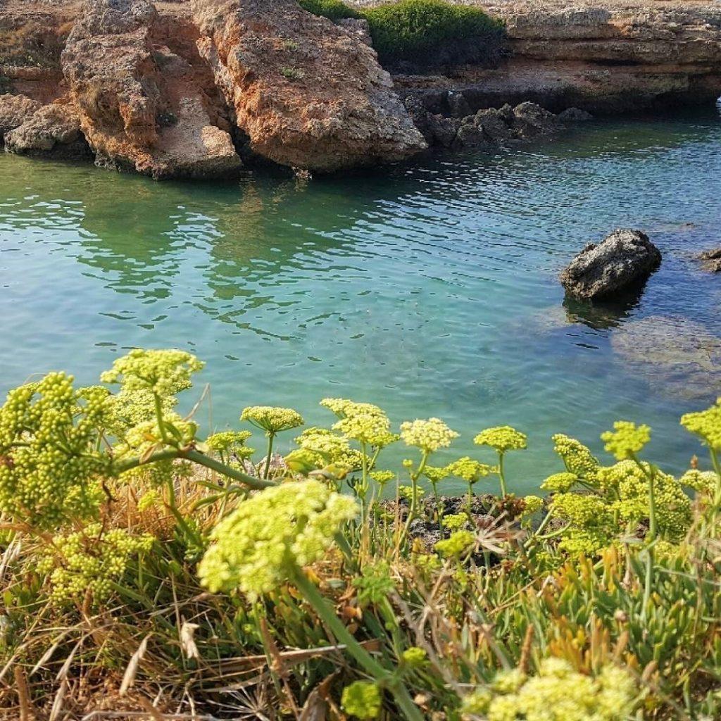 best beach italy puglia secretsand