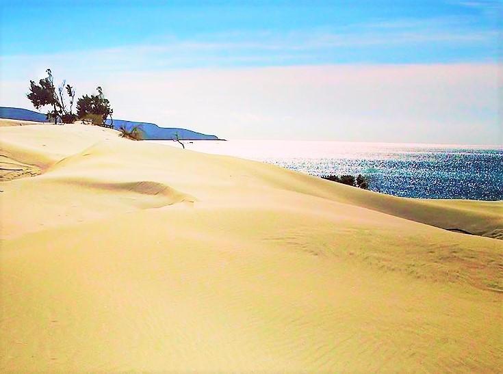 Dune Sardinia Sardegna beach